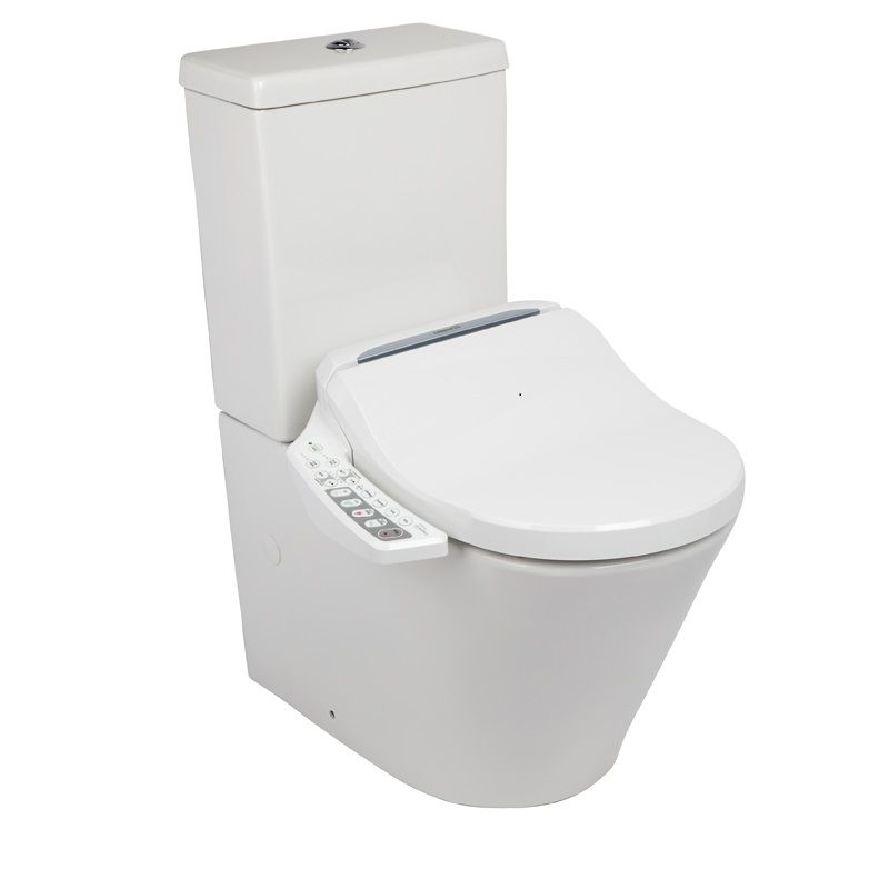 I M Considering Buying Those Toilets With A Built In Bidet And Dryer